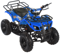 MOTAX ATV Mini Grizlik Х-16 (э/с)