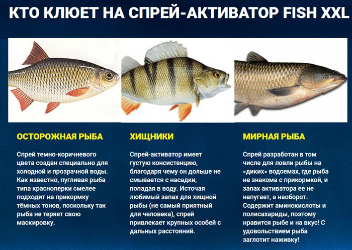 активаторы клева для рыбы купить