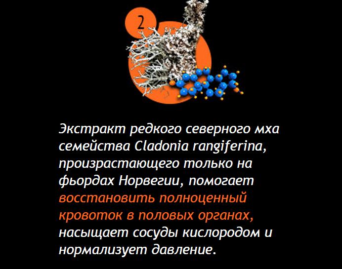 kakoy-preparat-dlya-potentsii-luchshiy