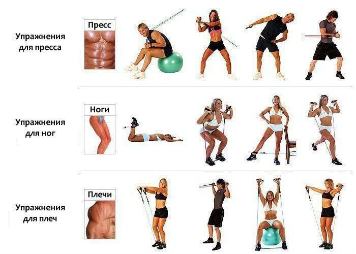 Упражнения для мужчин в домашних условиях с эспандером: принцип ...   500x700